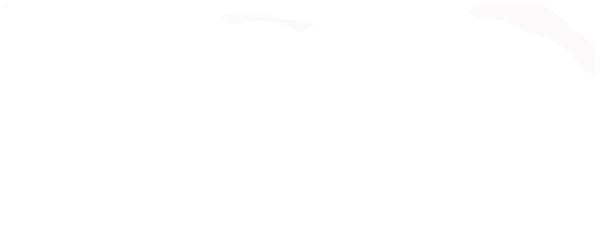 RIMAP European Risk Management Professional Certification