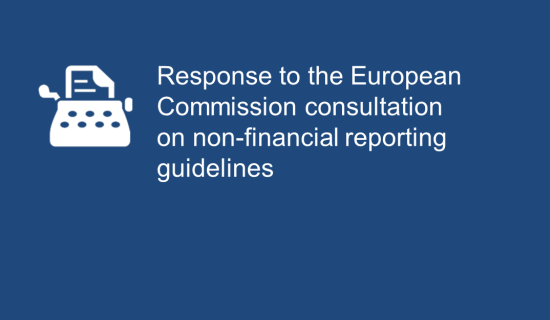 FERMA calls on Commission to include enterprise risk management in Non-Financial Reporting Guidelines